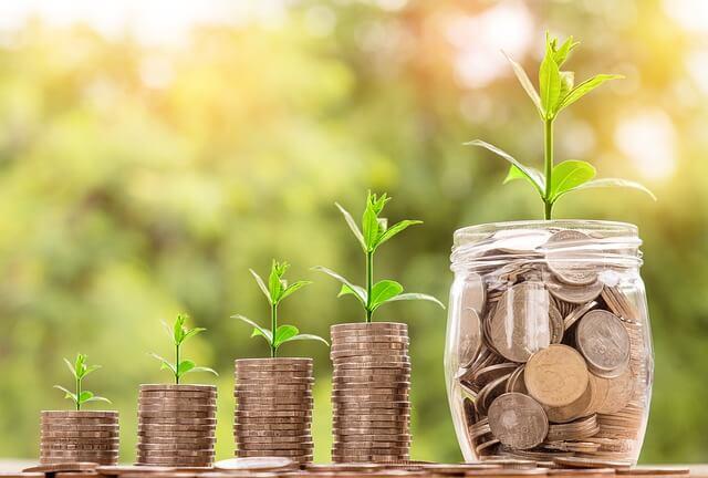 Vier zunehmende Münzstapel und ein Glas gefüllt mit Münzen, außerdem grüne Pflanze