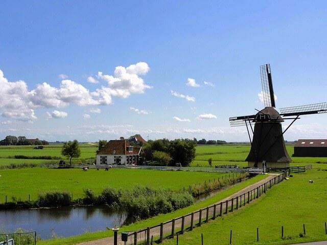 Grüne Wiese in Holland mit Windmühle und Teich und einem Weg, der zu einem Haus führt