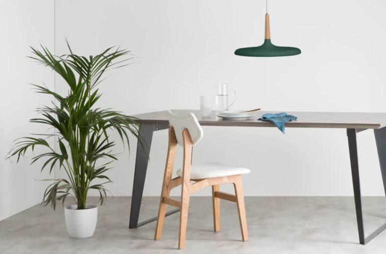 Table salon chaise plante et suspension