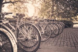 bicycles-bikes-transportation-383