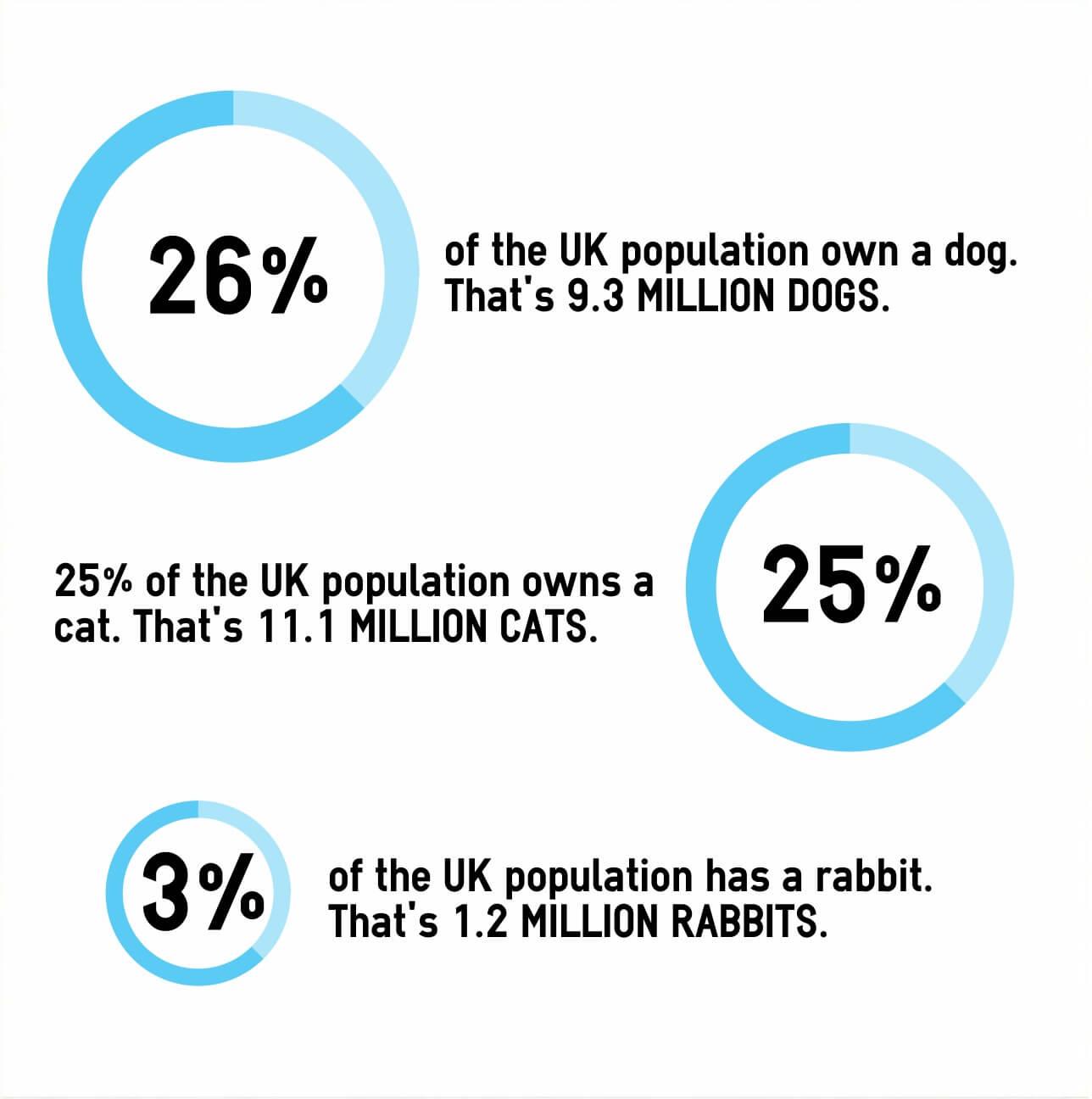 PDSA charity pet stats