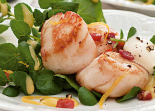 Valentines day scallops with crisp pancetta, watercress & lemon crème fraîche
