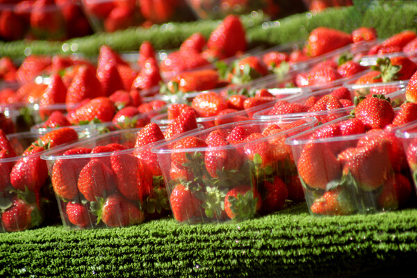 strawberries wimbledon
