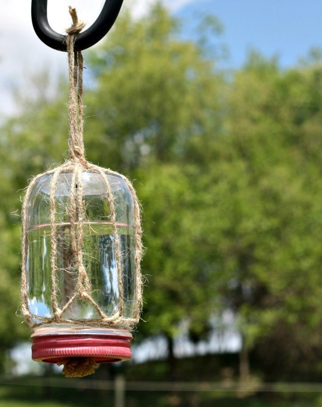 diy jar butterfly feeder